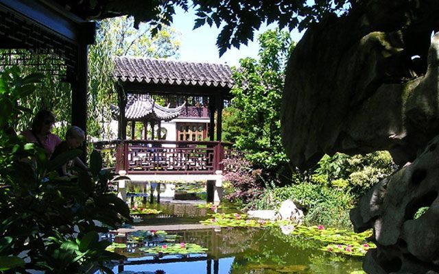 oriental pond with plants